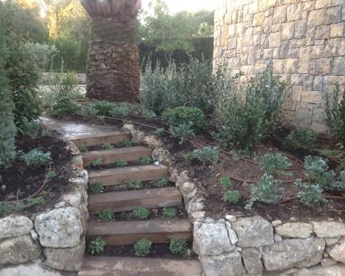 Escalier Plantes rampantes -Bruno