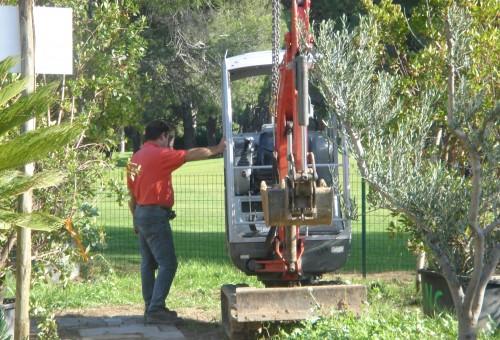 Préparation pour treuiller des oliviers Mandelieu